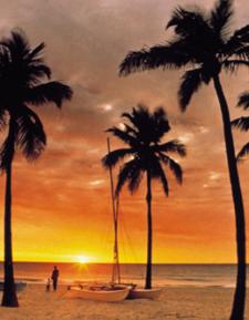 Ft Lauderdale DU22